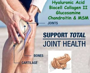 best glucosamine supplement