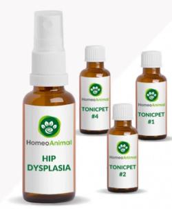 Remedies for Dog Hip Dysplasia