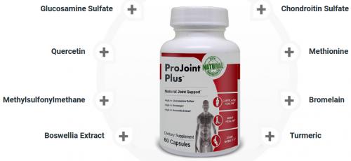 projoint plus ingredients