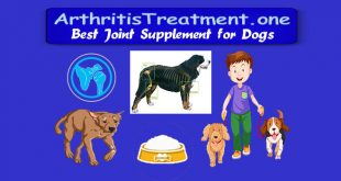 joint supplement for dogs